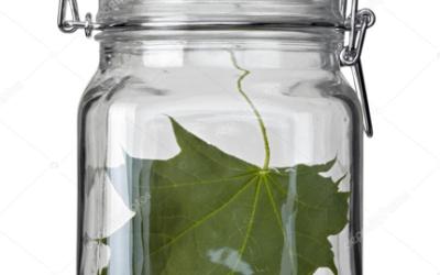 Eco-idée «Privilégier le verre»