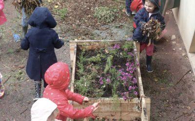Projet Cycle Nature – Ecole Notre-Dame du Point du Jour