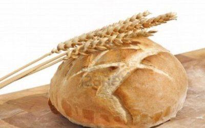 Du blé au pain Ecole Saint Joseph Chessy les Mines